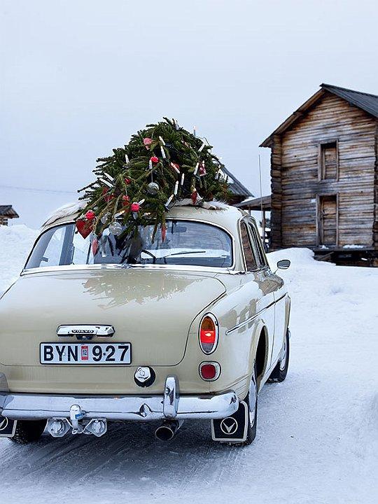 winter-wonderland-2014-habituallychic-001